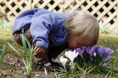 الگوبرداری از حامی بیرونی برای رشد حامی درونی(1)